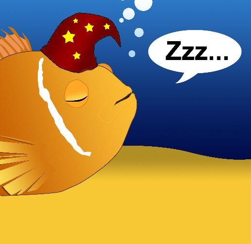 Don't disturb - your fish is asleep!
