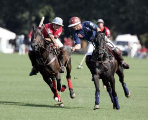 Horse polo: exclusive sport for real athletes